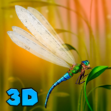 Dragonfly Predator Insect Simulator 3D Full